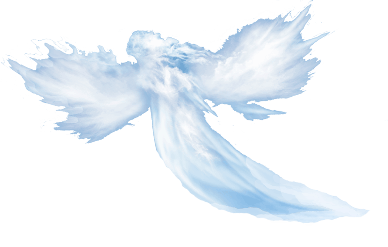Spirit4